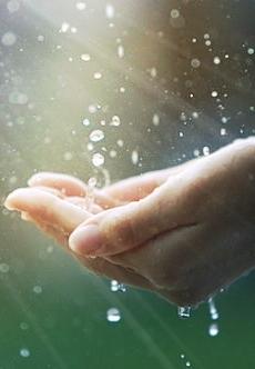 手心里的雨