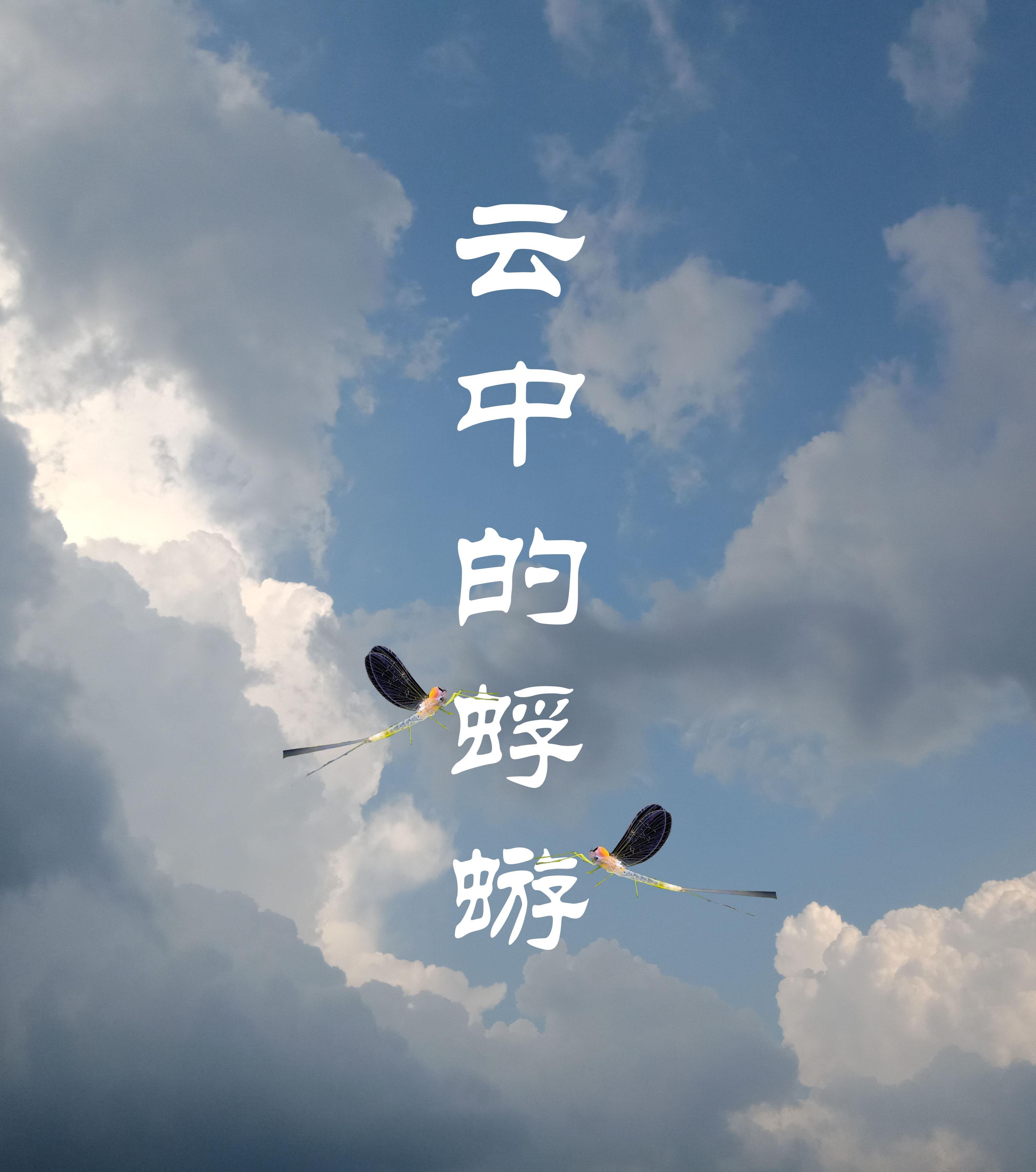 云中的蜉蝣