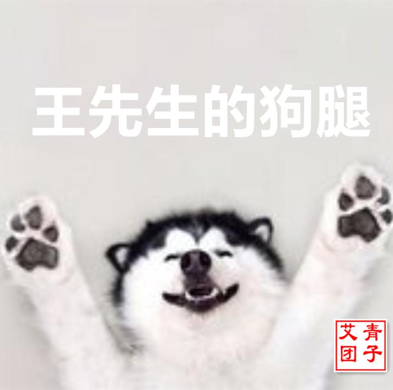 王先生的狗腿