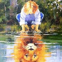 雨天打盹的狮子